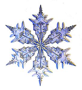 15-ые зимние экстремальные игры