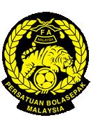 Товарищеский матч 2012. Манчестер Сити - Малайзия XI онлайн